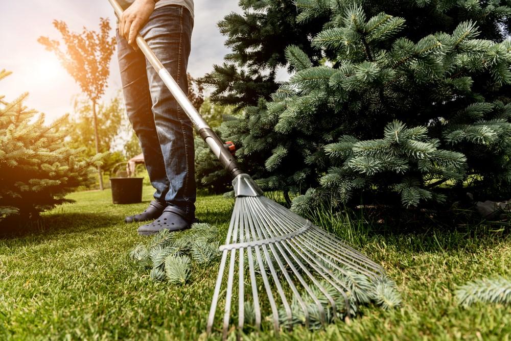 consejos-mantener-jardin-cuidado-ahorrar-energia